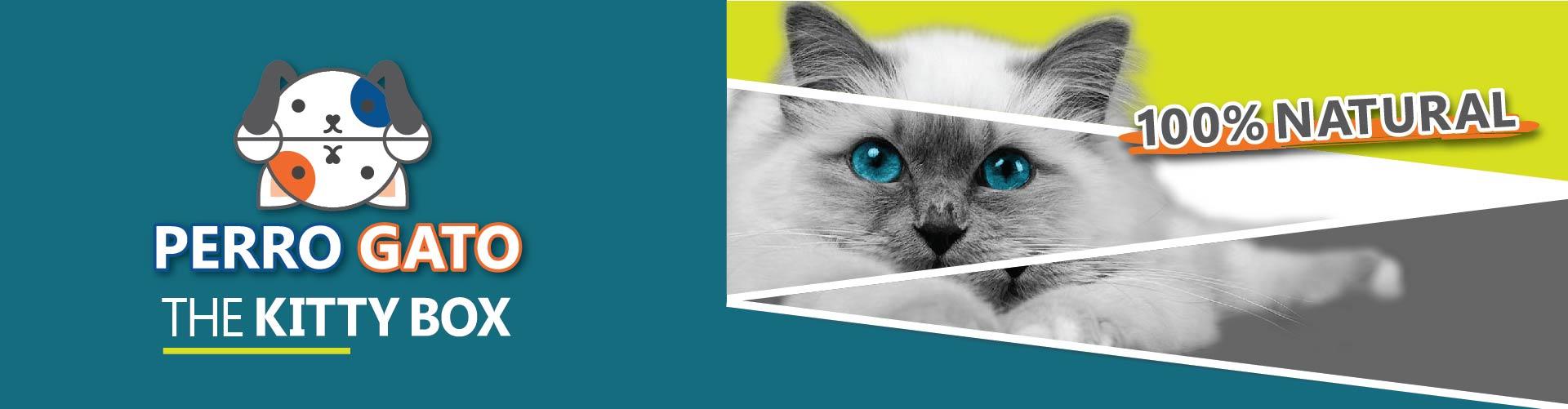 perro gato slide-01
